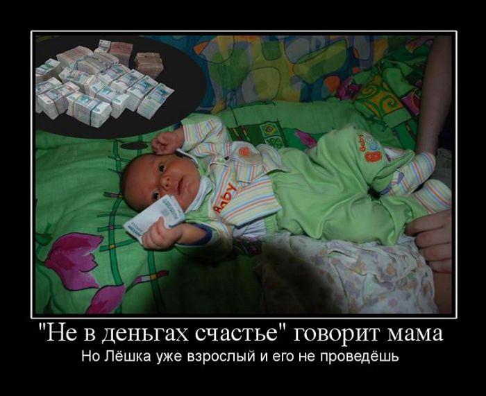 Смешные картинки не в деньгах счастье, сонный кот