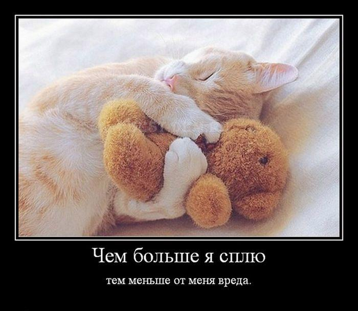 Дню, я сплю смешные картинки