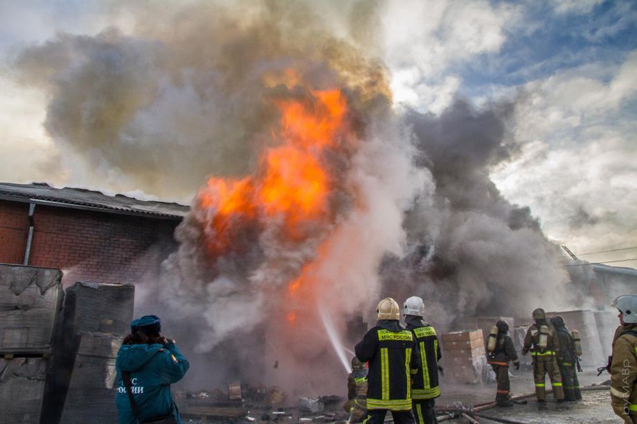 афиша фото сгорела пятерка рылся