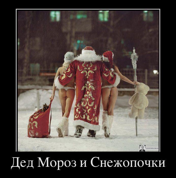 Демотиваторы новогодние просьбы деду морозу прикольные