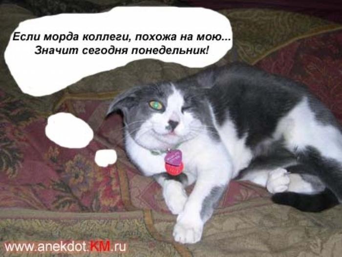http://i.uralweb.ru/albums/fotos/f/335/335eb3bef4d843505983f35c70635770.jpg