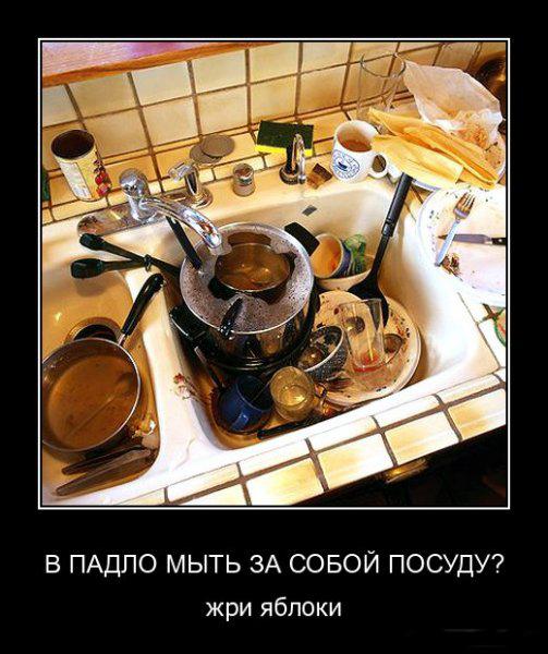 Мою посуду смешные картинки