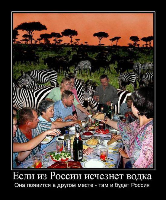 День россии юмор картинки