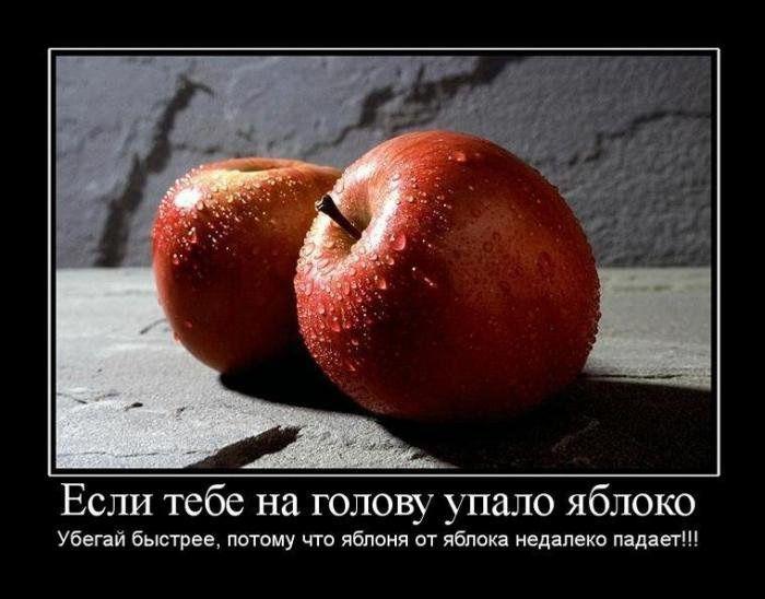 самых картинки хочешь есть ешь яблоко ряду аргонианами