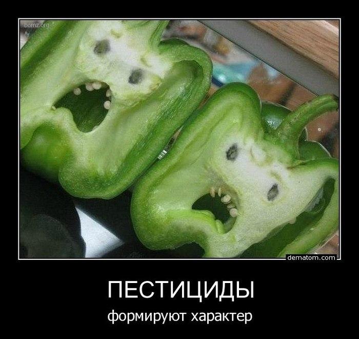 Демотиваторы о вегетарианцах