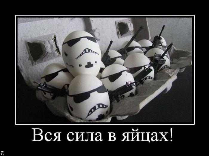 Сила мужская в яйцах