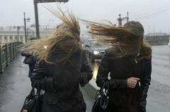 Синоптики предупреждают о возможных авариях в связи со шквалистым ветром