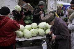 Затраты на уборку урожая в Свердловской области возросли из-за выпавшего снега