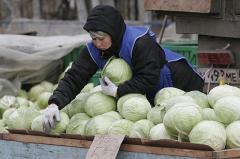 В свердловских городах может не хватить овощей и фруктов