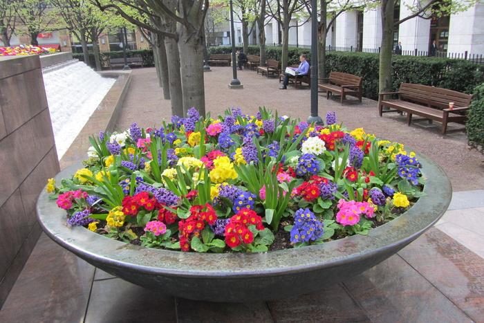Купить цветы на уралмаше екатеринбург