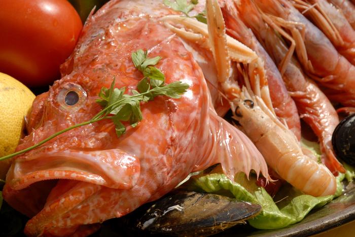 Рыбный четверг: влияние на сексуальную активность и способность забеременеть