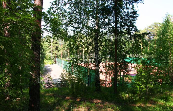 Корты Уктуса находятся почти на самой вершине гор среди соснового леса.